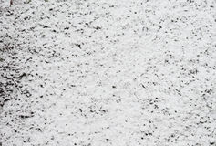Snow on meadow Royalty Free Stock Photo