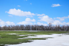 Snow melt in the early spring Royalty Free Stock Photography