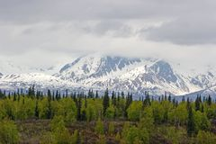 Snow melting on Alaska Range. Snow melting on mountains in Alaska Range Royalty Free Stock Photography