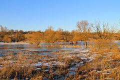 Snow melting on meadow Royalty Free Stock Photos