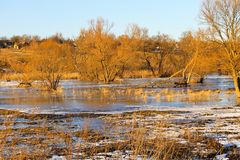 Snow melting on meadow. Snow melting on the meadow stock photography