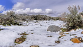 Snow melting panning. Video of snow melting panning stock video footage