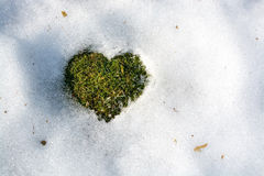 Snow melting in the shape of a heart. Spring love concept background cold climate relations. Sweden Stock Image
