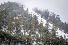 Snow on michlifen stock photo