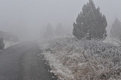 Snow mist makes road unclear Royalty Free Stock Image