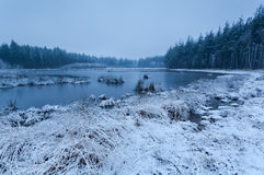 Snow misty morning on lake Stock Image