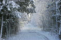 Free Snow Mobile Trail Stock Image - 12281411