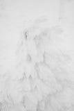 Snow Monsters area Mountain Zao, Japan . Stock Photography