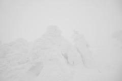 Snow Monsters area Mountain Zao, Japan . Stock Photos