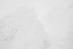 Snow Monsters area Mountain Zao, Japan . Royalty Free Stock Image