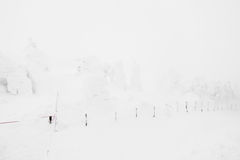 Snow Monsters area Mountain Zao, Japan . Royalty Free Stock Photo