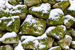 Snow and moss covered rocks. Rocks in a stone wall covered with moss, lichen and snow Royalty Free Stock Photo