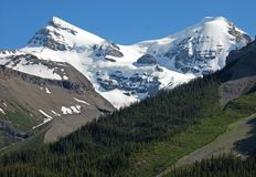 Snow mountain. Near Columbia Glacier in Rockies Icefield National Park royalty free stock photos