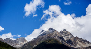 The snow mountain been covered by the white cloud. Clear sky the bottom is covered with by the white cloud of beautiful snow mountain Royalty Free Stock Photo