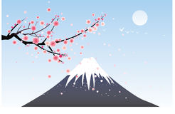 Snow mountain and cherry blossom Royalty Free Stock Photography
