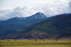 snow mountain cloudy valley Stock Photography