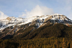 Snow mountain and forest Royalty Free Stock Images