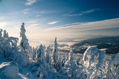 Snow mountain forest Royalty Free Stock Images