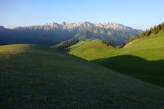 Snow mountain and grassland Stock Image