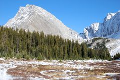 Snow mountain and meadow Royalty Free Stock Photo