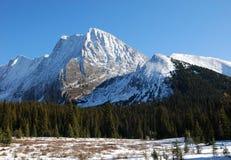 Snow mountain and meadow royalty free stock photos