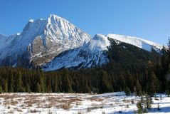 Snow mountain and meadow. On hiking trail to the Chester Lake in Kananaskis Country Alberta Canada stock images