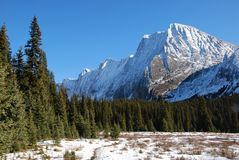 Snow mountain and meadow royalty free stock image