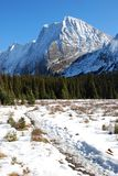 Snow mountain and meadow. On hiking trail to the Chester Lake in Kananaskis Country Alberta Canada royalty free stock image