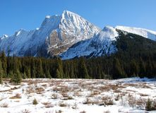 Snow mountain and meadow. On hiking trail to the Chester Lake in Kananaskis Country Alberta Canada stock photos