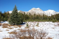 Snow mountain and meadow Stock Photos