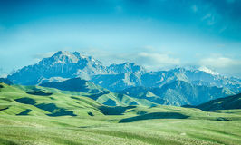 Snow mountain, meadow Royalty Free Stock Photos