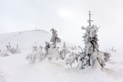 Snow Mountain. mountains under snow in the winter Stock Photo