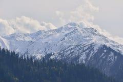 Snow mountain in Northern Pakistan Royalty Free Stock Photo