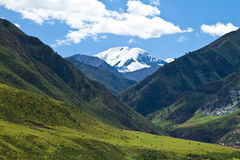 Snow mountain and pasture Stock Image