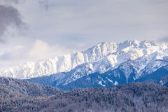 Snow Mountain range in the sunset Stock Image
