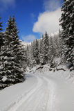 Snow mountain road Royalty Free Stock Photos