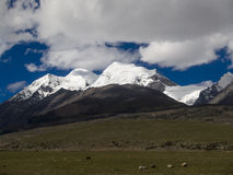 Snow mountain of tibet Royalty Free Stock Photos
