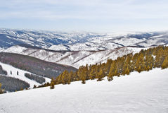 Snow mountain top view. A beatiful view from the top of a snowy mountain Royalty Free Stock Images