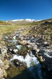 Snow mountain and torrent. River at gredos natural park Royalty Free Stock Photos