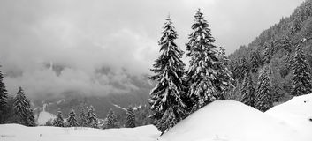 Snow Picture Royalty Free Stock Images