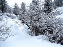 Snow and mountain Royalty Free Stock Photo