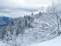 Snow and mountain Royalty Free Stock Photography
