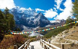 Snow mountain Xiannairi in Daocheng Yading Royalty Free Stock Photos