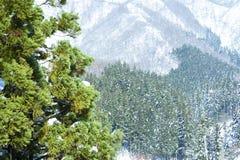 Snow mountains Stock Image