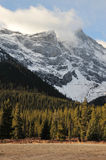 Snow mountains and forests Stock Photos
