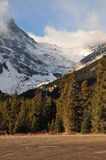 Snow mountains and forests Stock Photography