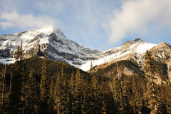 Snow mountains and forests Stock Photo