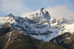 Snow mountains and forests stock images