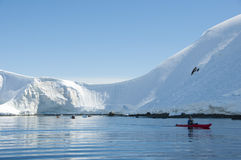Snow mountains and kayaker Royalty Free Stock Image