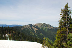 Snow in the Mountains of Olympic National Park Royalty Free Stock Photos